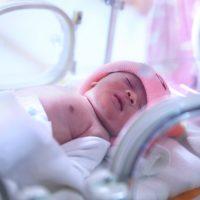 Neonatal Brachial Plexus Injuries